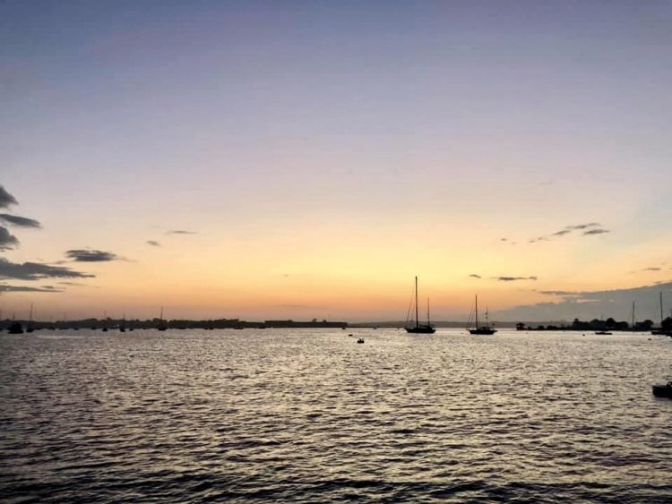 Newport bay at sunset